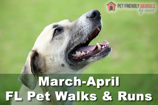 March-April Florida Pet Walks & Runs